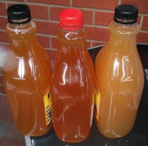 Cider racked into original 2L juice bottles