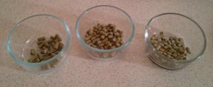 Hop Additions (10g Magnum, 12g Cascade, 18g Cascade)