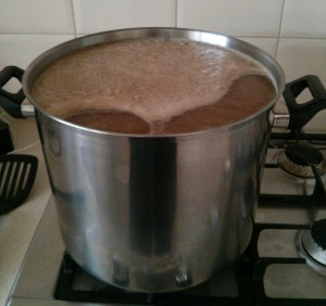 Bringing Wort to the Boil