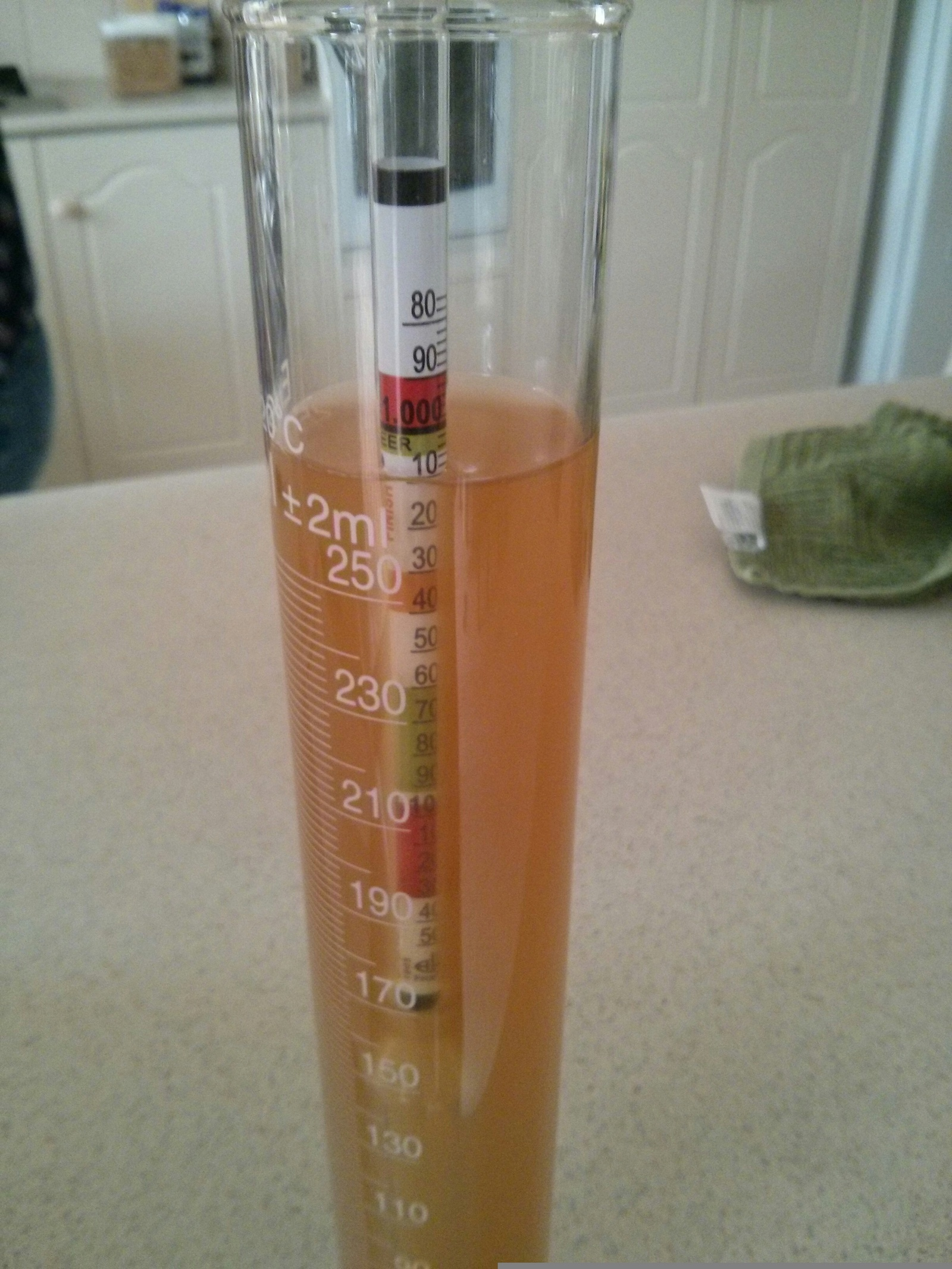 Final Gravity Prior to Bottling